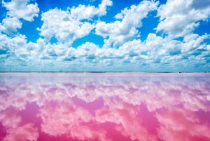 las-coloradas-pink-river-cancun.jpg