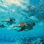 tour a isla mujeres con snorkel en el arrecife