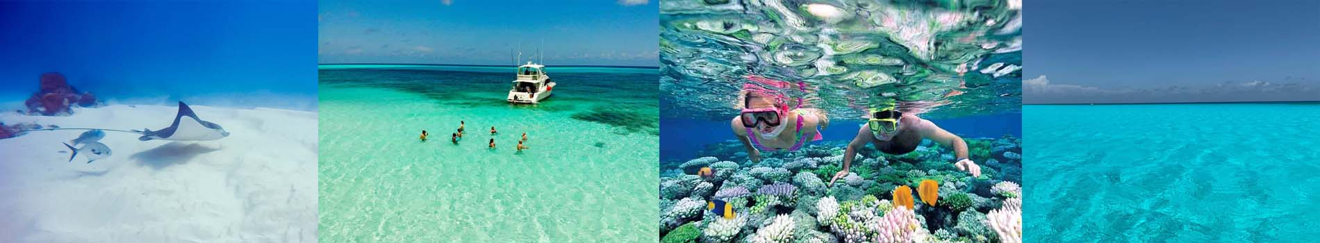 tour a cozumel desde cancun
